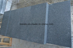 Flamed Medium Grey G654 Granite and Granite Paving Stone for Landscape pictures & photos