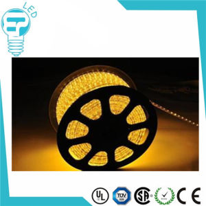 110V 220V High Voltage Outdoor LED Flexible Strip 5050 60LEDs Warm White LED Strip pictures & photos