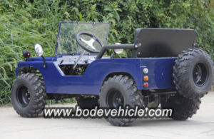 Bode New 500W Electric Dune Buggy pictures & photos