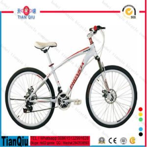 Factory Cheap Wholesale Popular Mountain Bike pictures & photos