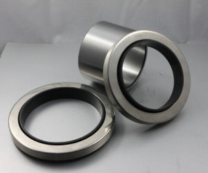 High Quality Oil Seal Seal Ring Mechanical Seal pictures & photos