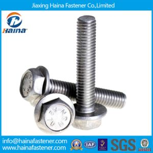 ANSI/ASTM Stainless Steel 304 Hexagon Head Flange Bolt pictures & photos