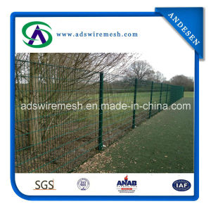 656 Double Wire Fencing Panels pictures & photos
