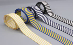 Hight Quality and New Made Ribbon for Clothe and Home Textiles 2016 pictures & photos