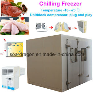 Chilling Freezer Room -20degree to Store Beef and Chicken pictures & photos