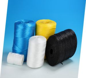 PP String Twine for Packing PP Rope pictures & photos
