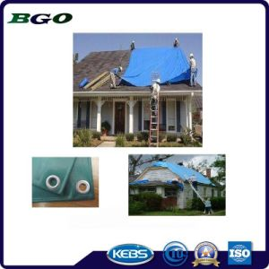 Anti-UV Fire Retardant PE Tarpaulin for Roof Cover pictures & photos