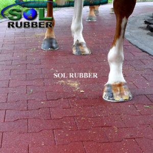 Solid Quality Horse Barn Floor Rubber Mat pictures & photos