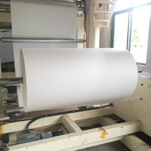 45GSM Sublimation Transfer Paper Roll for Sublimation Fabric pictures & photos