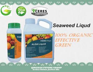 100% Organic Fertilizer Seaweed Extract, Seaweed Liquid Fertilizer pictures & photos