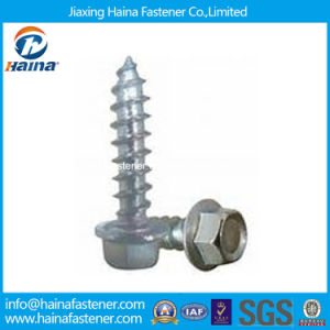 DIN6928 ISO7053 Hexagon Washer Head Self-Tapping Screw pictures & photos