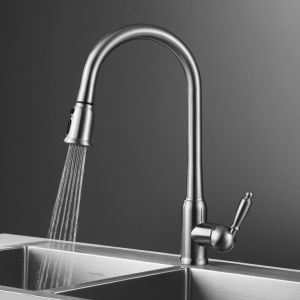 Wotai High Quanlity Single Lever Pull out Kitchen Faucet pictures & photos