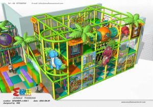 High Quality Jungle Themed Indoor Playground pictures & photos