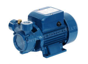 High Quality Surface Domestic Peripheral Water Pump with CE (QB-60) pictures & photos
