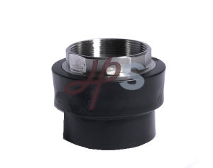 High Quality Male Thread HDPE Straight Union Fitting pictures & photos