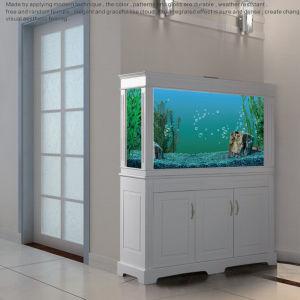 Aquarium Tank Glass- Shoes Cabine