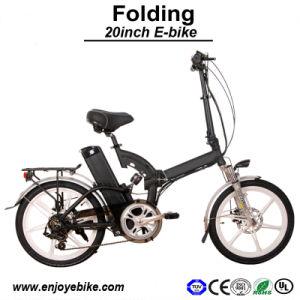 Integrated Wheel Motor 8fun Electric Bike E-Bicycle E-Bike Electric Bicycle (PE-TDN05H)