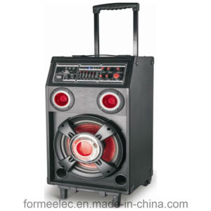 Multi Media Karaoke Speaker Amplifier Subwoofer RMS100W Trolley Speaker pictures & photos