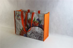 High Quality PP Woven Shopping Tote Bag pictures & photos