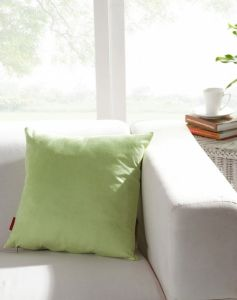 Light Green Square Sofa Seat Car Cushion