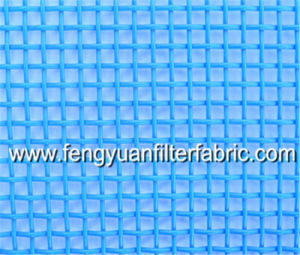 Square Hole Polyester Mesh Belt pictures & photos