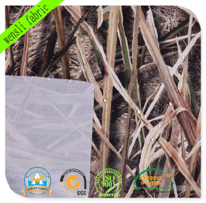 Camouflage Pattern Outdoor Fabrics with SGS Approved pictures & photos