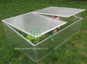 Cold Frame Greenhouse for Young Plants (C502) pictures & photos