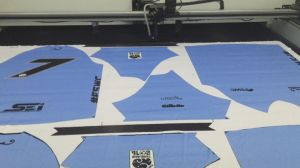 Printed Fabrics Laser Cutting Machine with CCD pictures & photos