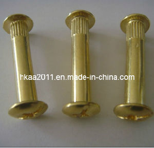 Brass Male and Female Furniture Connecting Screws Bolt Assembly pictures & photos