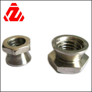 Security Nut pictures & photos