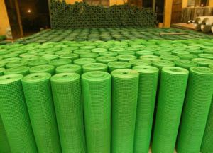 "1"" Mesh PVC Coated Welded Wire Mesh pictures & photos"