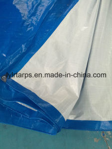 PE Tarp Cover Tarpaulin pictures & photos