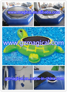 Turtle Inflatable Water Trampoline Inflatable Trampoline for Water Park (Mic-273) pictures & photos
