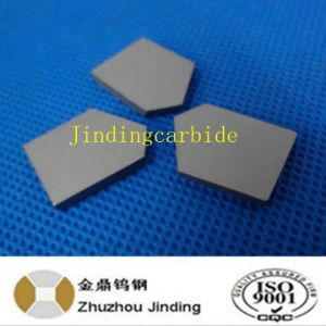 Tungsten Carbide Coal Drill Tips pictures & photos