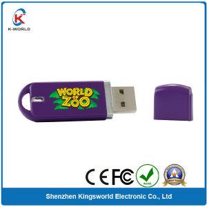 Purple Plastic USB Flash 1GB pictures & photos