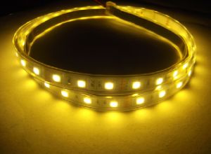 Silica Gel Tube Waterproof Strip Light 5050-1Meter-60SMD