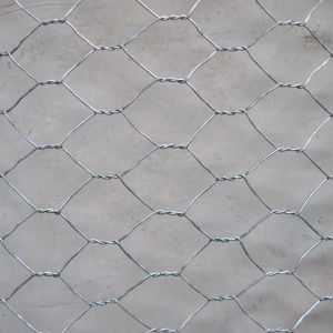 Fence Use Galvanized Wire Netting with Hexagonal Hole pictures & photos