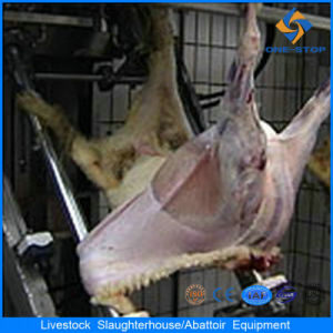 Sheep Slaughtering Equipment From China pictures & photos