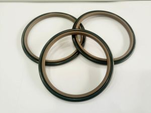Great Flexible Standard Compound Gasket pictures & photos