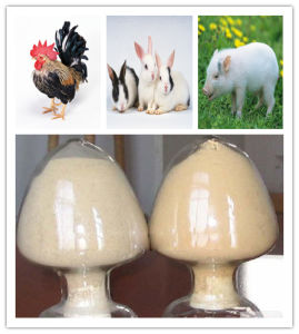 China Manufacture Feed Grade Yeast Powder pictures & photos