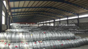 Made in China Galvanized Steel Wire with High Tension pictures & photos