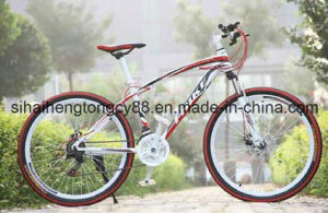 White 26inch&21speed Steel MTB pictures & photos