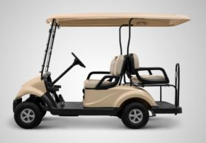 2 Front Seater Plus 2 Back Seater Cheap 4 Seater Electric Golf Cart Made by Dongfeng Motor on Sale
