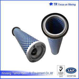 Donaldson P119410 Air Filter Element pictures & photos