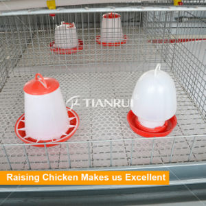 H type battery pullet rearing chicken cage for day old chicken pictures & photos