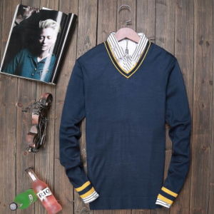 The High Quality Men Sweater Free Shipping pictures & photos