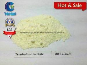 Medical Trenbolone Acetate Powder CAS 10161-34-9 Anti Estrogen Steroid pictures & photos