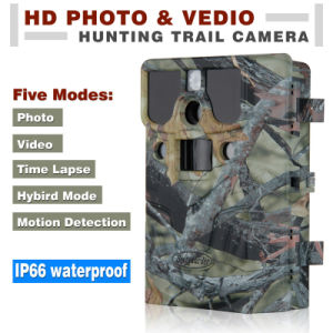 12MP HD 1080P No-Glow Black LED Hunting Camera pictures & photos