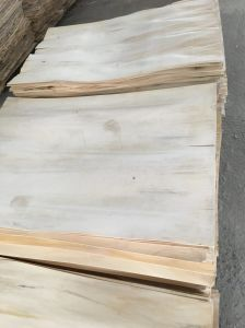 Brown / Black Film Faced Plywood for Construction pictures & photos
