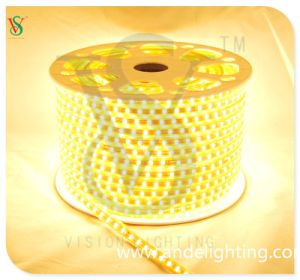 Ce Two Years Warranty Flexible LED SMD Rope Light LED Strip Light pictures & photos